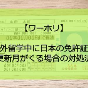 出発前にやっておきたい!日本の運転免許更新について【ワーホリ】