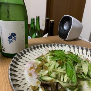 「杉錦 エドノナツザケ」×「鯛の梅酢カルパッチョ」
