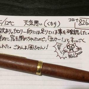 【万年筆・インク】妻のねこ日記・2020年06月第2週!【猫写真と猫イラスト】