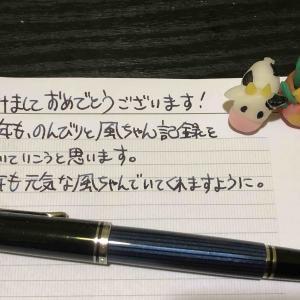【万年筆・インク】妻のねこ日記・2021年01月第1週!【猫写真と粘土細工】