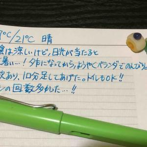 【万年筆・インク】妻のねこ日記・2021年01月第2週!【猫写真と粘土細工】