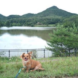 犬とお出かけ-お散歩編- 有馬富士公園(兵庫県三田市)近くのドッグカフェもご紹介