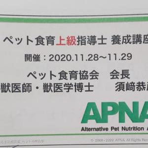 いよいよラスト!ペット食育 上級指導師養成講座へ!