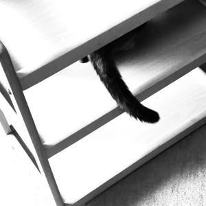 今日の3捨て【家具】