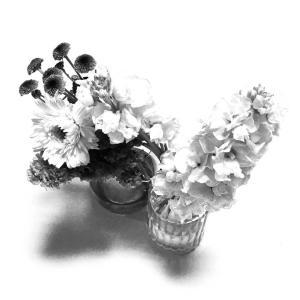 今日の3捨て【お花たち】