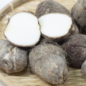 【初心者でも簡単】里芋の育て方!水やり・肥料・芽かきなど栽培のポイントを詳しく解説