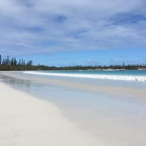 旅 ニューカレドニア イルデパン島