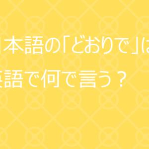 【使える英語表現】日本語の「どおりで」は英語で何て言う?