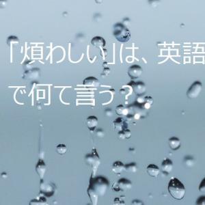【使える英語表現】日本語の「煩わしい」は英語で何て言う?