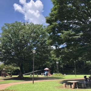 夏晴れ 久々の公園遊び