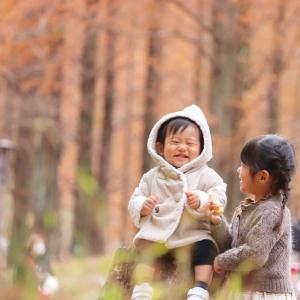 2020年11月29日 トーベ・ヤンソンあけぼの子どもの森公園|飯能市