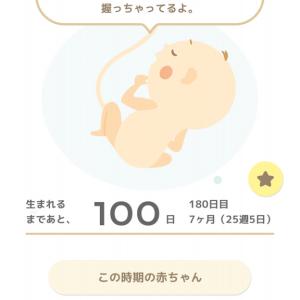 赤ちゃんが産まれるまであと100日👶🏻