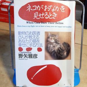 野矢雅彦『ネコがおなかを見せるとき』