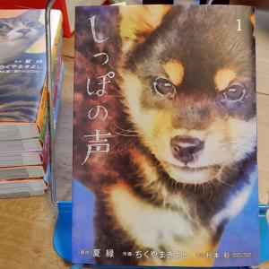 『しっぽの声』第1巻 作画:ちくやまきよし、原作:夏緑、協力:杉本彩