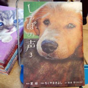 『しっぽの声』第3巻 作画:ちくやまきよし、原作:夏緑、協力:杉本彩