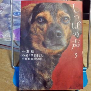 『しっぽの声』第5巻 作画:ちくやまきよし、原作:夏緑、協力:杉本彩