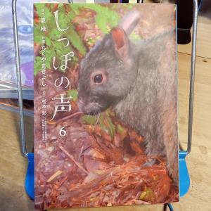 『しっぽの声』第6巻 作画:ちくやまきよし、原作:夏緑、協力:杉本彩