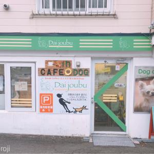 札幌月寒東 ノーリードokのドックカフェ Dai jou bu (ダイジョウブ)