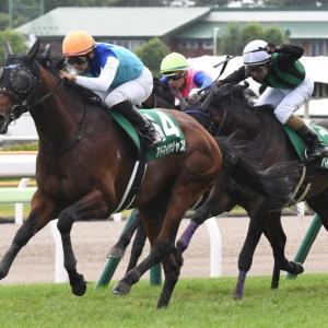 函館記念【G3】予想回顧 2020年中央競馬(JRA)