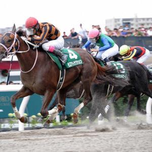 エルムステークス【G3】予想/1回目 2020年 中央競馬(JRA)
