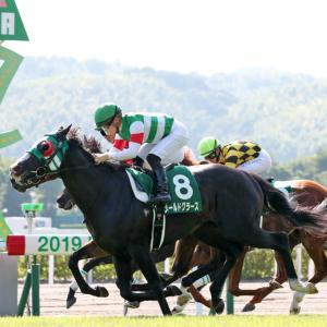 小倉記念【G3】予想/1回目 2020年 中央競馬(JRA)