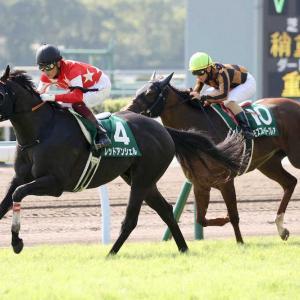テレビ西日本賞北九州記念【G3】ジョーカナチャンにチャンス!競馬予想/予想回顧