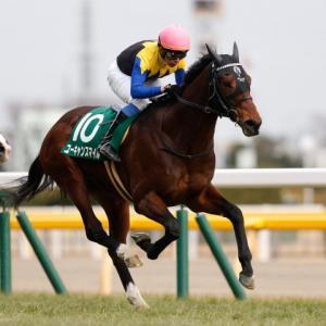 新潟記念【G3】競馬予想/1回目 2020年(JRA)
