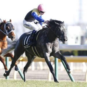 新潟記念【G3】アイスバブルにチャンスあり!?競馬予想