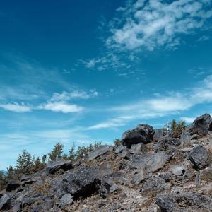 【登山記】久しぶりの夏の八ヶ岳は、西岳・編笠山を周回してきました
