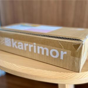 【山道具】SALEの誘惑に駆られ karrimor Online Storeで買ったのは...