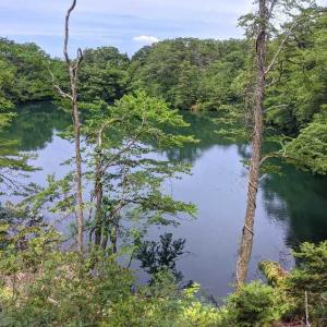 久しぶりの旅行④ 白神山地・十二湖へ