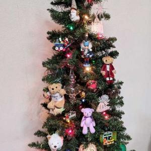 クリスマスツリーを出しました。