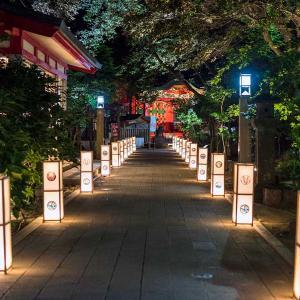江ノ島の灯籠で夕涼みの散歩をしてきました。