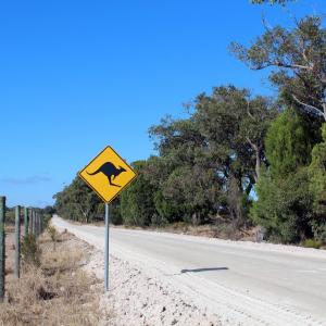 QLD州の運転免許