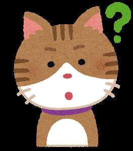 猫とかいう謎の生物