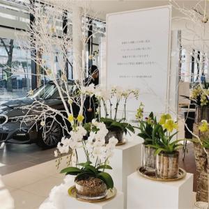 BMW 調布支店の 『お・も・て・な・し』。