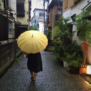今週のお題「傘」〝健康〟と関連付けると・・・?