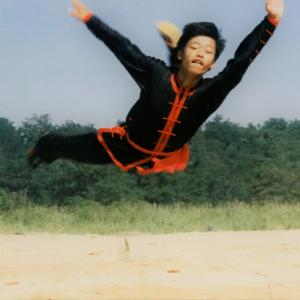 『中国武術』の山ほどある種類  ~速い武術・拳法編②