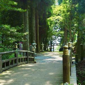 【熊本観光】自然満喫1日モデルコース〜阿蘇編〜