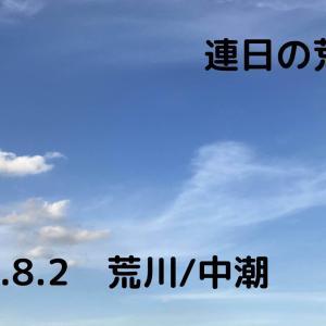 連日の荒川シーバス!