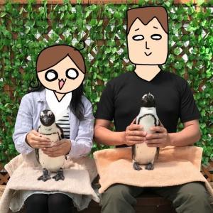 様々な鳥たちと触れ合える! 掛川花鳥園