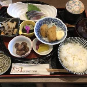 「旬菜の味わい がら里」蟹江の隠れ家的居酒屋 ランチ