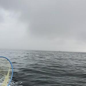 天候に悪戦苦闘の釣行でした