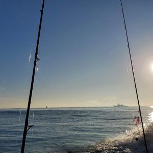 東京と神奈川のタイラバ乗合船、近況を調べてみました