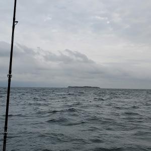 大型は出ませんでしたが、本命4枚釣れました