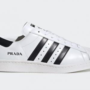 9/8(火)発売 PRADA adidas Originals SUPERSTAR