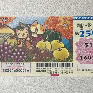 実りの秋❣️ 200円握っておやつ買う 🍡🍡