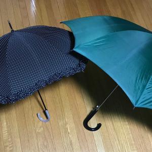 雨でもないのに、傘3本持って歩く 👟👟