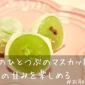 【お取り寄せ】共楽堂のひとつぶのマスカットは、たっぷりフルーツの甘みを楽しめる!口コミ・評判