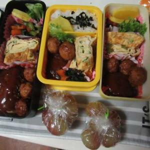 スガキヤが、石川県から撤退するの・・・ ☆ハンバーグ弁当☆